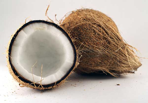 shaved-coconut